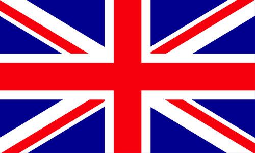 ie_flag